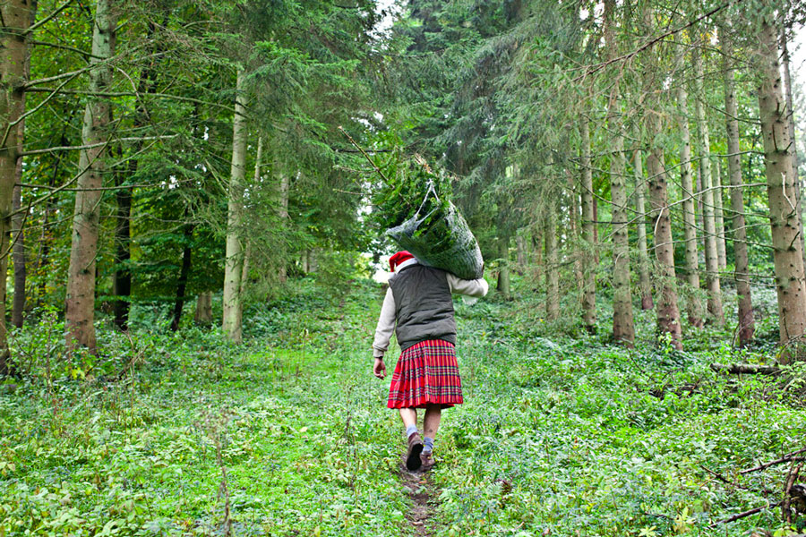 Pines and Needles started life in Scotland – this may explain the kilt uniform.